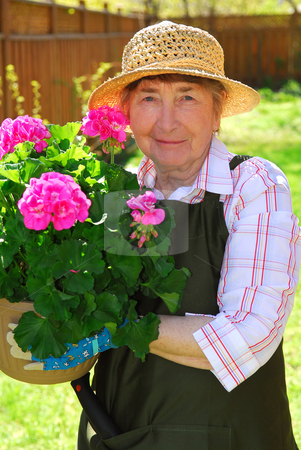Senior woman gardening stock photo, Senior woman holding a pot with flowers in her garden by Elena Elisseeva