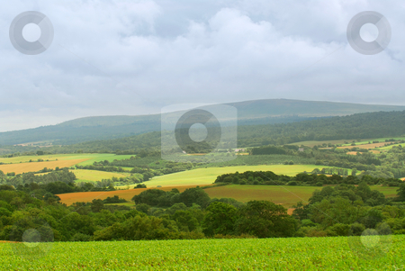 Agricultural landscape stock photo, Scenic view on agricultural landscape in rural Brittany, France by Elena Elisseeva