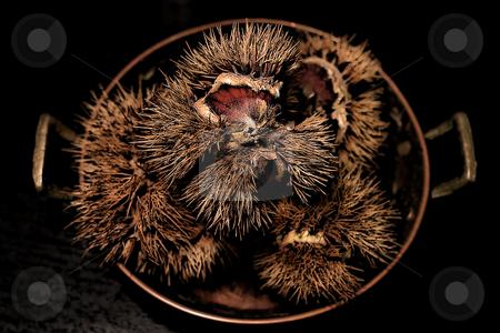 ... a plate of chestnut stock photo,  by emiliano beltrani