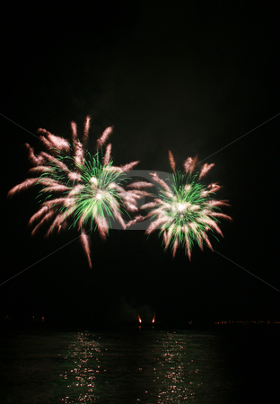 Green spider-like fireworks stock photo, Green and white spider-like fireworks by the bay by Jonas Marcos San Luis