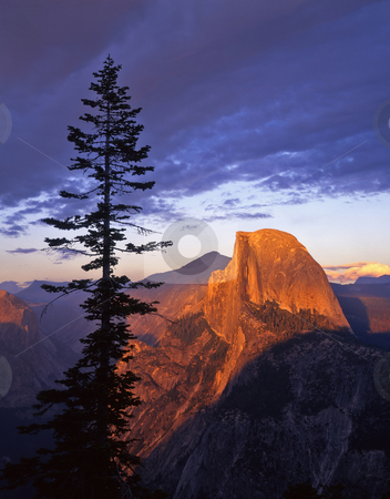 Half Dome From Glacier Point 2 stock photo, Half Dome photographed from Glacier Point in Yosemite National Park, California. by Mike Norton