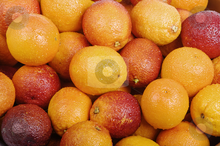 Organic Blood Oranges stock photo, Frame filled with shiny organic blood oranges by Scott Griessel