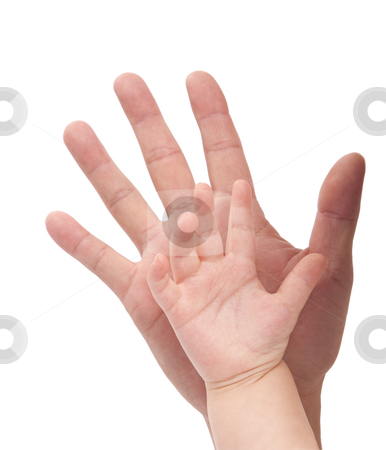 Kid and father's hand. Family concept stock photo, Kid and father's hand. Family concept.Isolated with white background. by tomwang