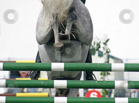 Horse Jump stock photo, The backside of a horse jumping over a fence by Lucy Clark
