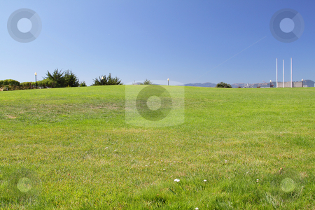 Field grass stock photo, A field of grass on the sunny day by Olena Pupirina