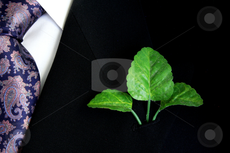 Corporate Green stock photo, Black suit, shirt and tie with three green leaves on lapel by Walter Ulloa