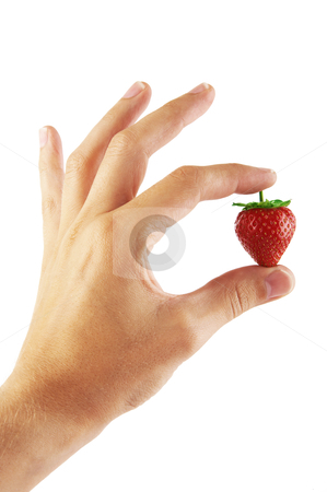 Fresh strawberry in a hand stock photo, Fresh strawberry in a hand on a white background by krasyuk
