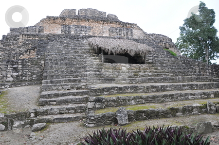 Chacchoben Mayan Ruins stock photo, Chacchoben Mayan Ruins in Mexico by Ritu Jethani