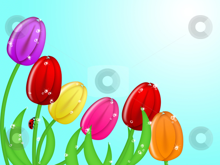 Ladybug Climbing Up Tulip Flower Stem Assorted Colors stock photo, Red Ladybug Climbing Up Tulip Flower Assorted Colors Illustration by Thye Gn