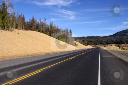 Scenic high way stock photo, Scenic road through Yellowstone national park in Wyoming by Sreedhar Yedlapati