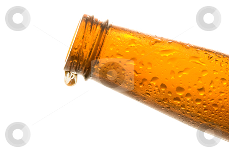Beer Bottle stock photo, A wet Beer Bottle with beverage ready to be consumed. by Robert Byron