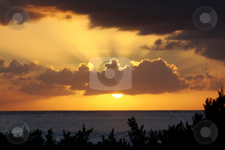 Ocean Sunset stock photo, Rays Behind Cloud at Ocean Sunset with Vegetation Foreground by Walter Ulloa