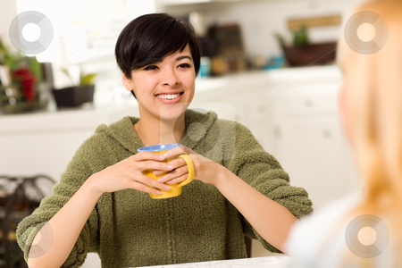 Multi-ethnic Young Attractive Woman Socializing with Friend stock photo, Multi-ethnic Young Attractive Woman Socializing with Friend in Her Kitchen. by Andy Dean
