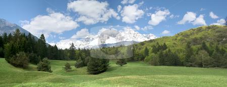 Mountain Landscape stock photo, Mountain Landscape - Green Fir Forest by Stelian Ion
