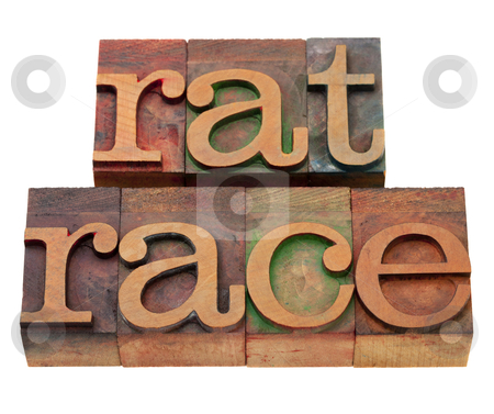 Rat race phrase in letterpress type stock photo, endless, self-defeating or pointless pursuit - rat race phrase in vintage wooden letterpress printing blocks, stained by color inks, isolated on white by Marek Uliasz