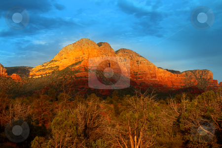 Red rock hills stock photo, Red rock hill in Sedona Arizona in evening sun light by Sreedhar Yedlapati