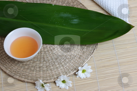 Tropical Spa stock photo, Tropical Spa background (green leaf, white flowers, oil) by Piotr_Marcinski