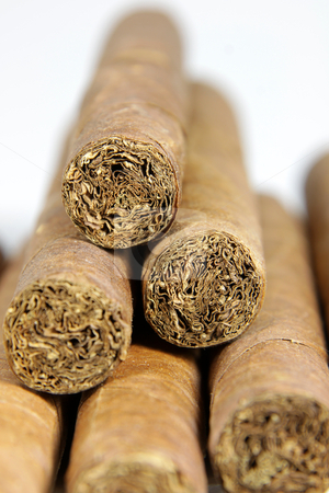 Cigar Stack stock photo, A row of authentic Cuban cigars.  by Chris Hill
