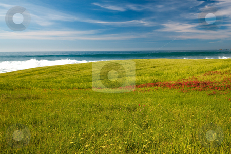 Beautiful green field stock photo, Green field with an amazing view of the beach on the background by ikostudio
