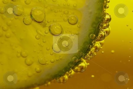 Lime bubbles in sparkling water stock photo, Photo of lime in a glass of sparkling water by timberry