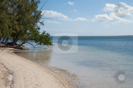 Cayman Kai Beach stock photo, Cayman Kai Beach, Grand Cayman by Jaime Pharr