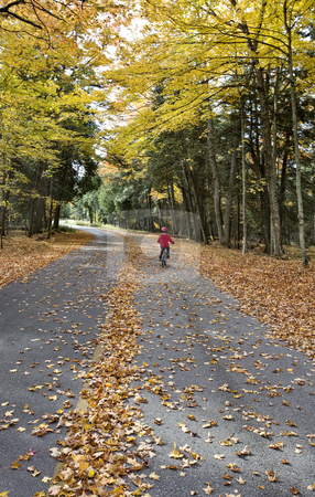 Autumn Leaves stock photo, Autumn Leaves on road northern Michigan child on bicycle bike by Mark Duffy