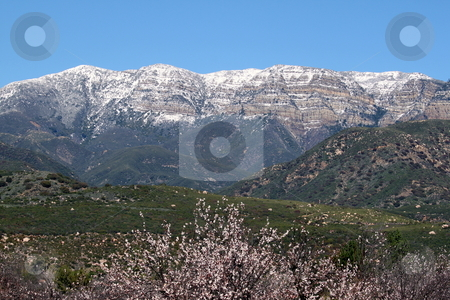 Topa Topa stock photo, panorama of Topa Topa Mountains in Ojai with a farm in the foreground by Henrik Lehnerer