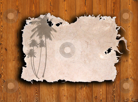 Palm with old grunge antique paper texture  stock photo, palm with old grunge antique paper texture by rufous