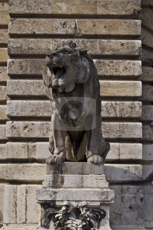 Guarding stock photo, lion guarding the entrance to the castle in Budapest by Juliane Jacobs