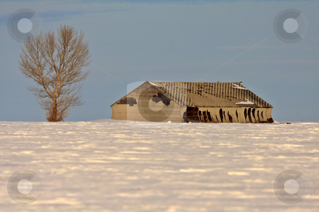 Abandoned Barn near City stock photo, Abandoned Barn near City Regina Saskatchewan by Mark Duffy