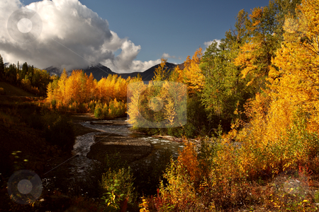 Autumn colors along Rescue Creek in Northern British Columbia stock photo, Autumn colors along Rescue Creek in Northern British Columbia by Mark Duffy