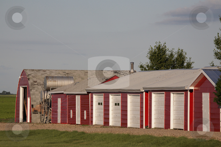 Neat farm buildings in Saskatchewan stock photo, neat farm buildings in Saskatchewan by Mark Duffy
