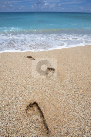 Footprints on the beach stock photo, Footprints on the beach by tomwang