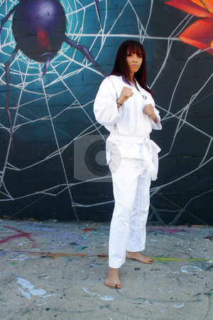 Beautiful Martial Arts Girl and Graffiti (2) stock photo, A beautiful young girl wearing a traditional martial arts uniform stands ready in front of a graffiti spider on his web. by Carl Stewart