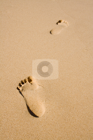 Footprints stock photo, Footprints in the sand by Pierre-Yves Babelon