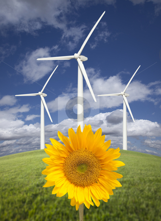Wind Turbines Against Dramatic Sky with Bright Sunflower stock photo, Wind Turbine Against Dramatic Sky, Clouds and Bright Sunflower in the Foreground.  by Andy Dean