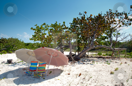 Barker's Beach stock photo, Barker's National Park, Grand Cayman Island by Jaime Pharr