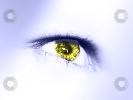 Beautiful eye isolated stock photo, Detailed close-up view of the human eye  by Viktor Thaut