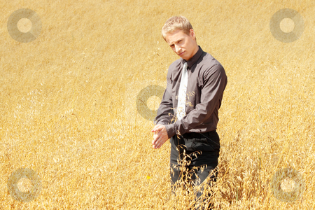 Farmer in suit standing in field of oats stock photo, Young modern farmer in suit standing in field of oats   by Piotr_Marcinski