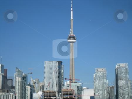 CN Tower in Toronto stock photo, CN Tower in Toronto, Canada by Ritu Jethani