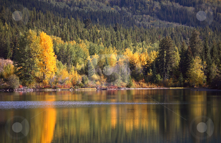 Autumn reflections in scenic Alberta stock photo, Autumn reflections in scenic Alberta by Mark Duffy