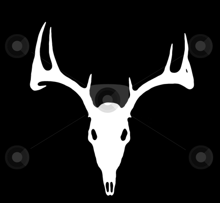 European Deer Silhouette White on Black stock photo, A European Deer Silhouette White on Black by David Schliepp