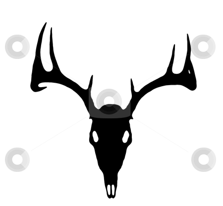 European Deer Silhouette Black on White  stock photo, A European Deer Silhouette Black on White  by David Schliepp