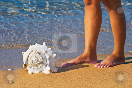 Next to a seashell stock photo, A seashell lying on a golden Mediterranean beach with a person, whose legs are only visible, standing next to it  by Andreas Karelias
