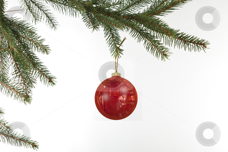 Red Christmas ball stock photo, Red Christmas ball hanging from Tree by novelo