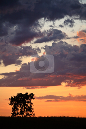 Gorgeous twilight in scenic Saskatchewan stock photo, Gorgeous twilight in scenic Saskatchewan by Mark Duffy