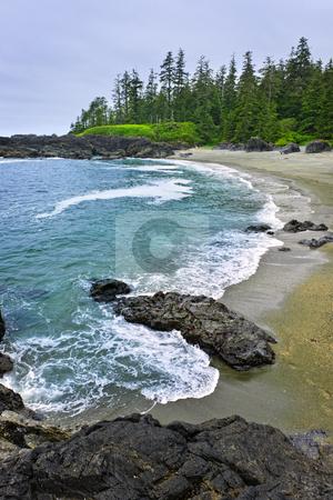 Coast of Pacific ocean in Canada stock photo, Rocky shore of  Pacific Rim National park, Canada by Elena Elisseeva
