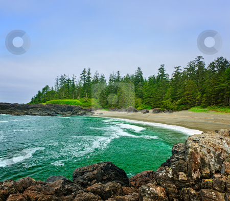 Coast of Pacific ocean in Canada stock photo, Rocky shore of  Pacific Rim National park, Canada by Elena Elisseeva