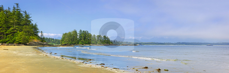 Coast of Pacific ocean, Vancouver Island, Canada stock photo, Panoramic view of Long Beach shore in Pacific Rim National park, Canada by Elena Elisseeva