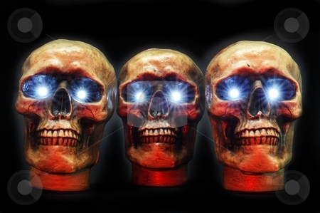 Skulls stock photo, Halloween Skulls by WScott